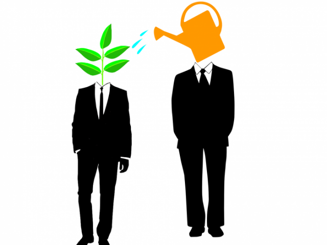 Esperienza di mentoring